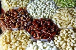 brown rice weight gain