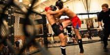 MMA Gloves for Muay Thai