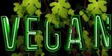 Vegan Muay Thai
