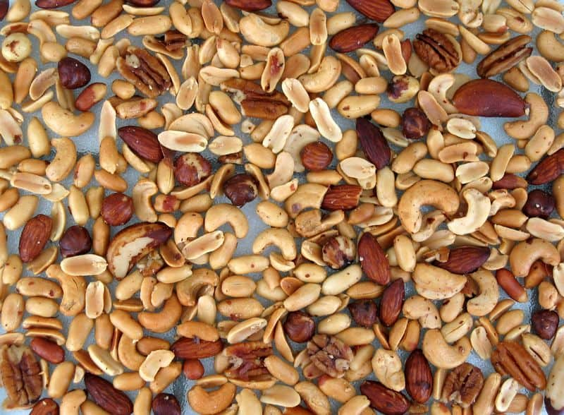 mixed nuts by melchoir