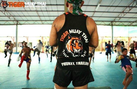 tiger muay thai vacation