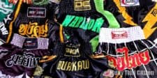 Best Muay Thai Shorts: A Compendium of Style 2017
