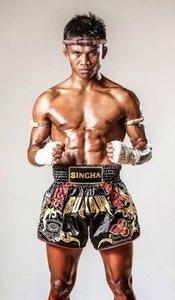 top kickboxers
