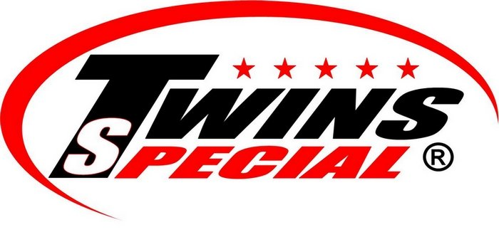 Image result for Twins special logo