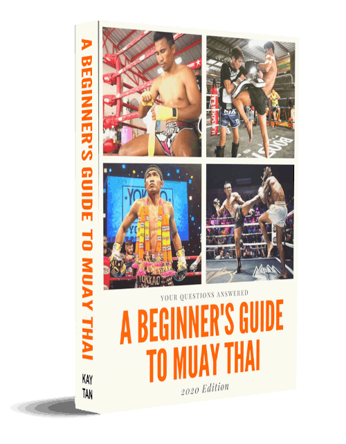 muay thai ebook
