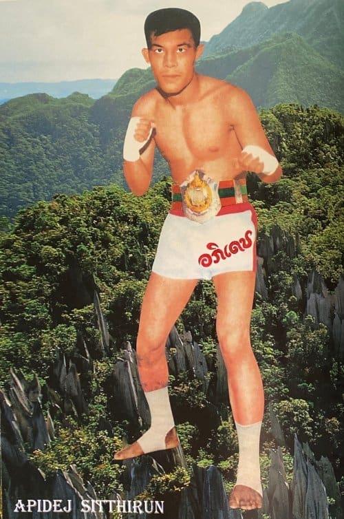 muay thai kicker