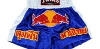 Most Iconic Muay Thai Shorts of All Time